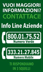 Ricerchi Agenti? Chiama il n. 800017552